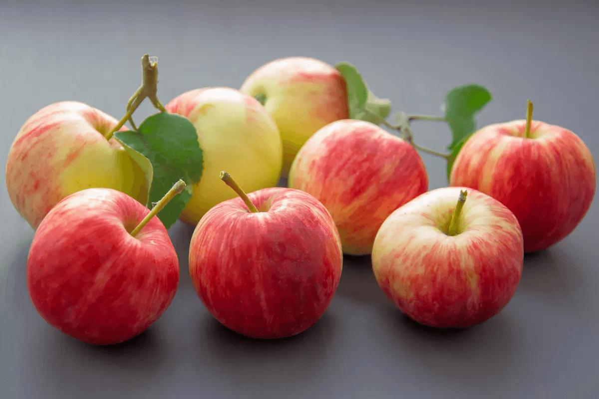 Como eliminar celulite – 30 alimentos que vão ajudar 19