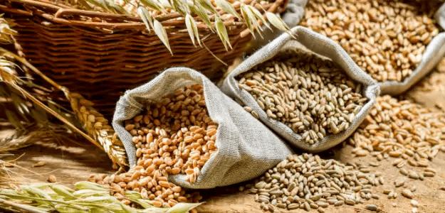 Como eliminar celulite – 30 alimentos que vão ajudar 2