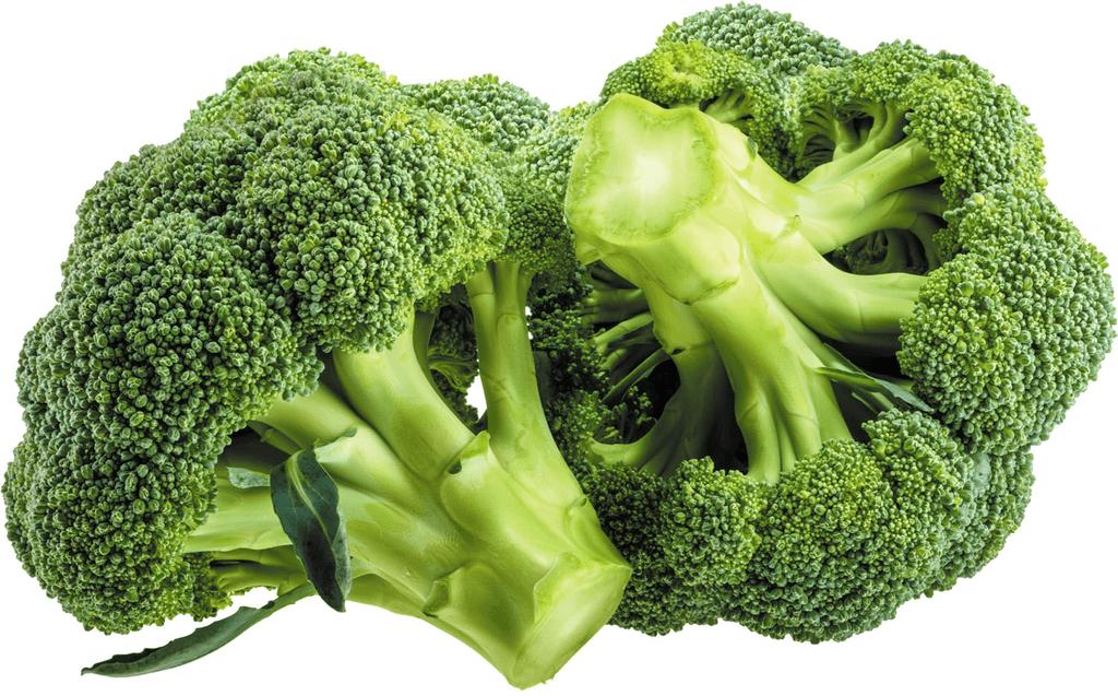 Como eliminar celulite – 30 alimentos que vão ajudar 3