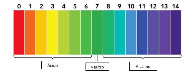 Caixa de Texto: Neutro